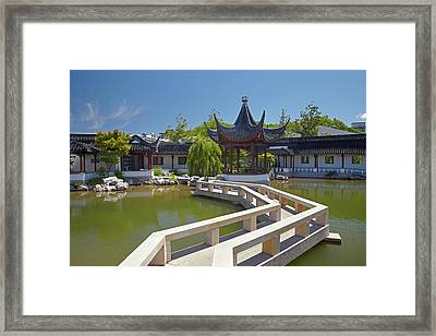 Chinese Gardens, Dunedin, Otago, South Framed Print by David Wall