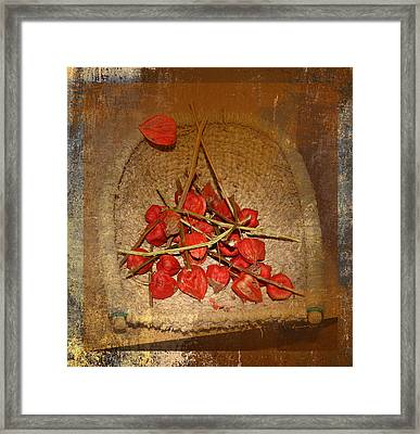 Chinese Lantern Seed Pods Framed Print by Kume Bryant