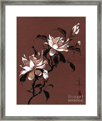 Chinese Magnolia Framed Print by Linda Smith