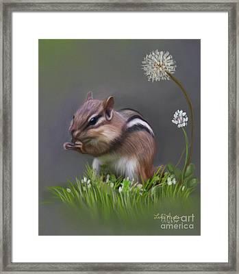 Chipmunk Framed Print by Lena Auxier