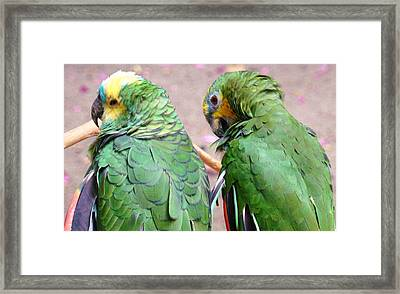 Chit And Chat 2 Framed Print by Van Ness