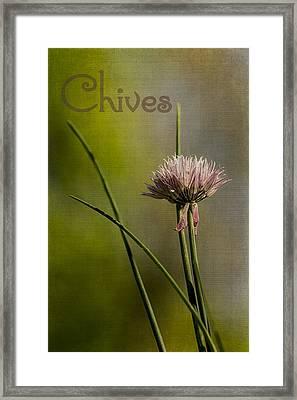 Chives Framed Print by Wayne Meyer
