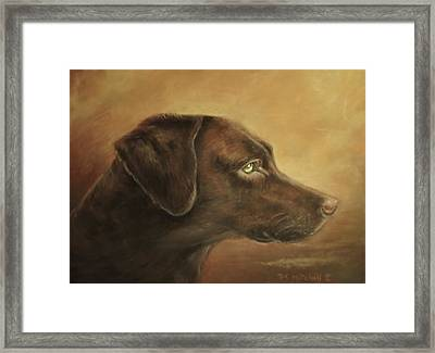 Chocolate Lab Framed Print by Patricia Schneider Mitchell