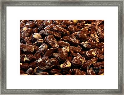Chocolate Seahorses Framed Print by Kiril Stanchev