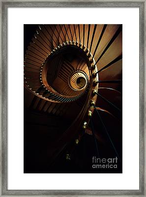 Chocolate Spirals Framed Print