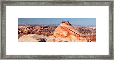 Chocolate Swirl Pano Framed Print