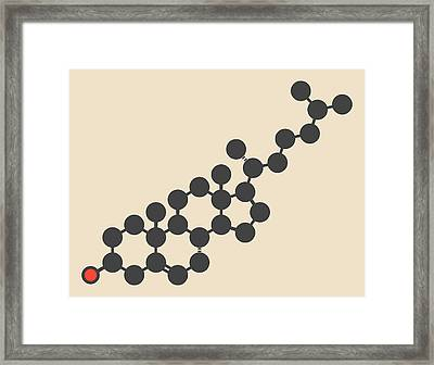 Cholesterol Molecule Framed Print