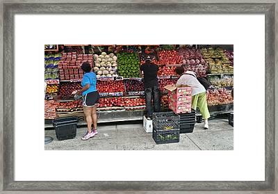 Choosy Fruit Picking Framed Print