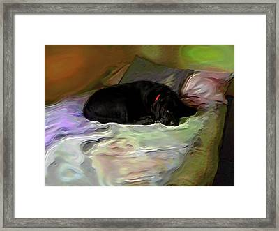 Framed Print featuring the mixed media Chopper Dreams Of Beds by Terence Morrissey