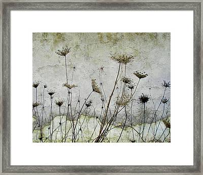 Chorus Of Queens Framed Print by Gothicrow Images