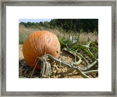 Chosen Framed Print by Richard Reeve