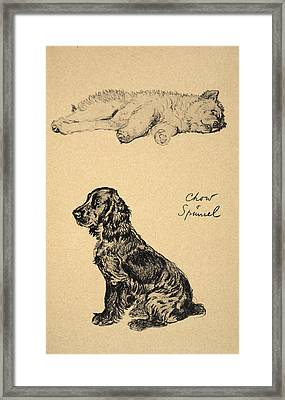 Chow And Spaniel, 1930, Illustrations Framed Print