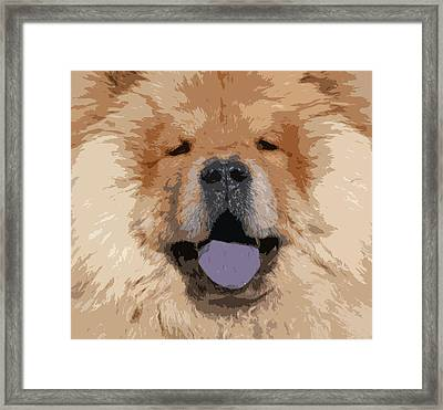 Chow Chow Framed Print by Nancy Merkle