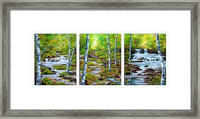 Chris And Willy's Falls Framed Print