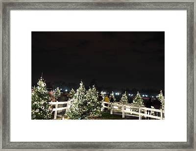 Christmas At The Ellipse - Washington Dc - 01136 Framed Print by DC Photographer
