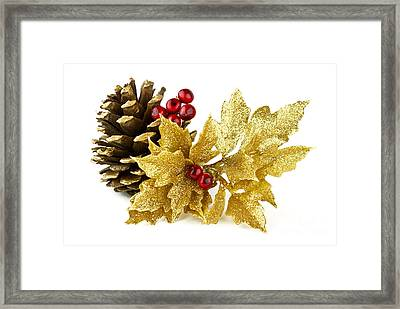 Christmas Framed Print by Blink Images