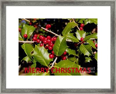 Christmas Card 1  Framed Print