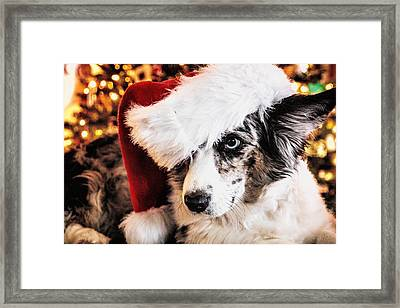 Christmas Cardigan Framed Print