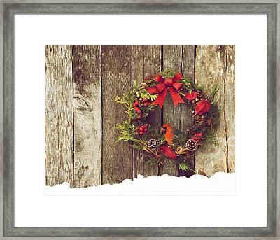 Christmas Cardinal. Framed Print by Kelly Nelson