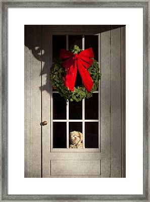 Christmas - Clinton Nj - Christmas Puppy Framed Print by Mike Savad