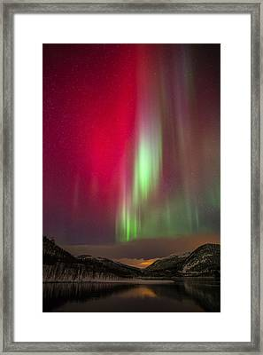 Christmas Colors Framed Print by Anders Hanssen