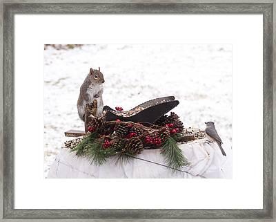 Christmas Critters Framed Print