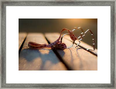 Christmas Decorations On Frosty Bench Framed Print