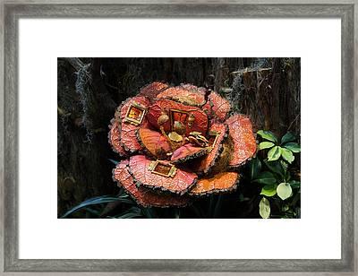 Christmas Display - Us Botanic Garden - 011313 Framed Print by DC Photographer