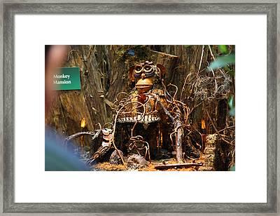 Christmas Display - Us Botanic Garden - 011316 Framed Print by DC Photographer