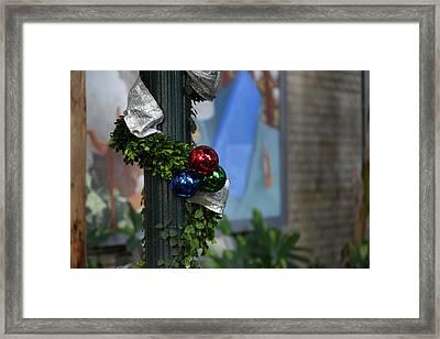 Christmas Display - Us Botanic Garden - 01132 Framed Print by DC Photographer