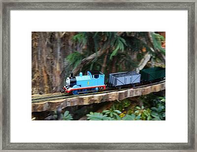 Christmas Display - Us Botanic Garden - 011325 Framed Print
