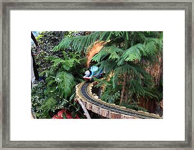 Christmas Display - Us Botanic Garden - 011326 Framed Print by DC Photographer