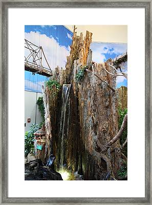 Christmas Display - Us Botanic Garden - 011341 Framed Print