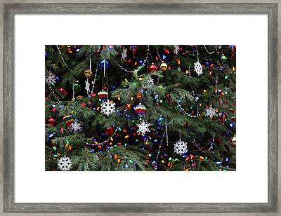 Christmas Display - Us Botanic Garden - 011350 Framed Print by DC Photographer