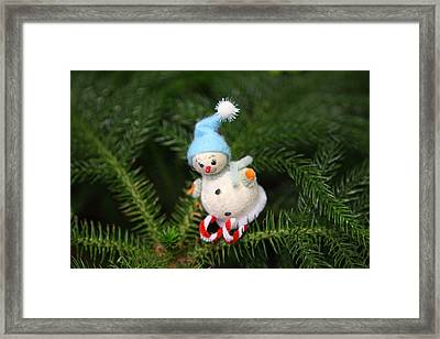 Christmas Display - Us Botanic Garden - 011355 Framed Print