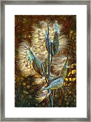 Christmas Floozy - Paint Framed Print by Steve Harrington
