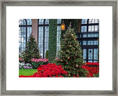 Christmas Garden #2 Framed Print
