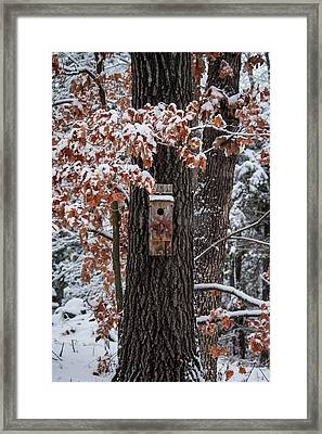Framed Print featuring the photograph Christmas Greetings by Wayne Meyer