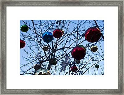 Christmas Is Looking Up This Year Framed Print by Bill Cannon