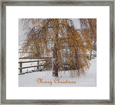 Christmas Is Orange Framed Print