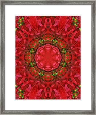 Christmas Kaleidoscope Iv Framed Print