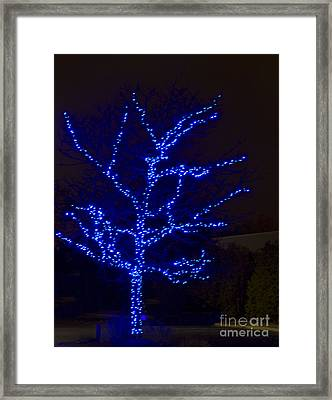 Christmas Light Series No 2  Blue  Framed Print