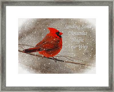 Christmas Magic Cardinal Card Framed Print by Lois Bryan