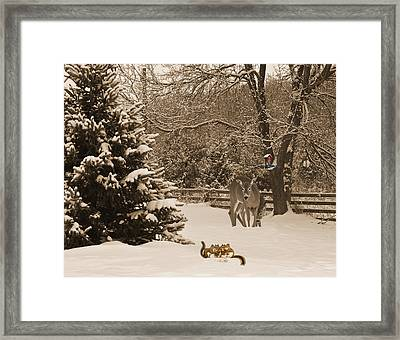 Christmas Morning. Framed Print by Kelly Nelson