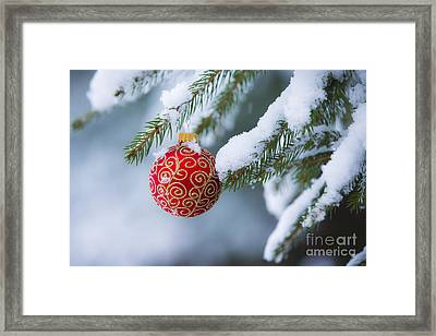 Christmas Ornament Framed Print by Diane Diederich