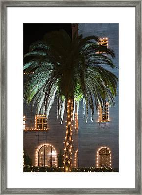 Christmas Palm Framed Print by Kenneth Albin