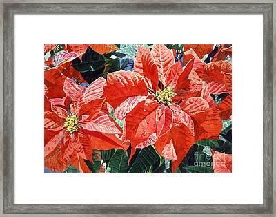 Christmas Poinsettia Magic Framed Print by David Lloyd Glover
