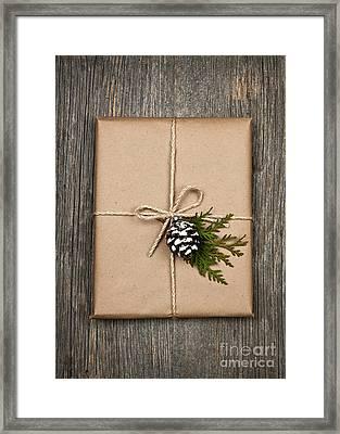 Christmas Present  Framed Print by Elena Elisseeva