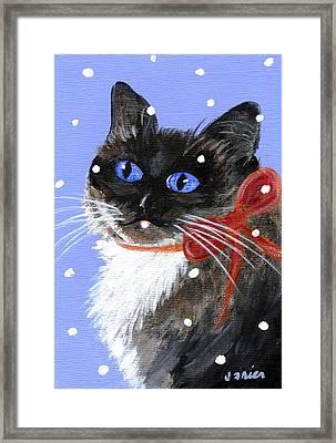 Christmas Siamese Framed Print by Jamie Frier