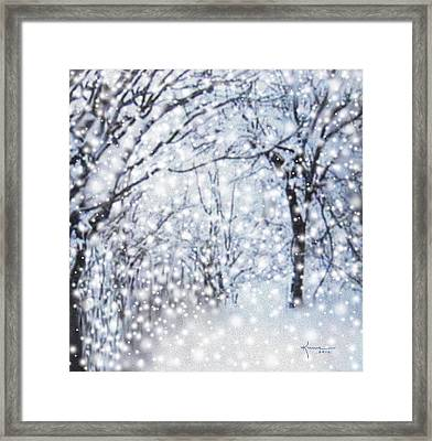 Christmas Snow Framed Print